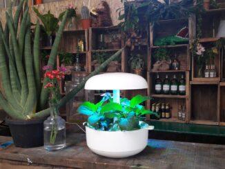 Plantui: l'orto a casa