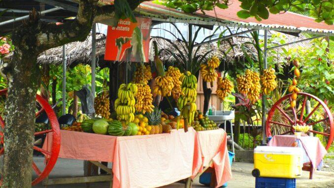 Un chiostro di frutta in Costa Rica. Il Paese è noto per la sua bellezza paesaggistica.