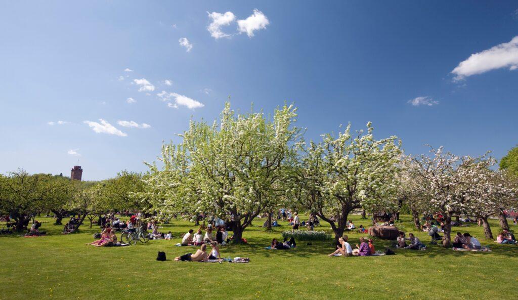 Parco Rosendal a Stoccolma - ©Foto Ola Ericson/imagebank.sweden.se