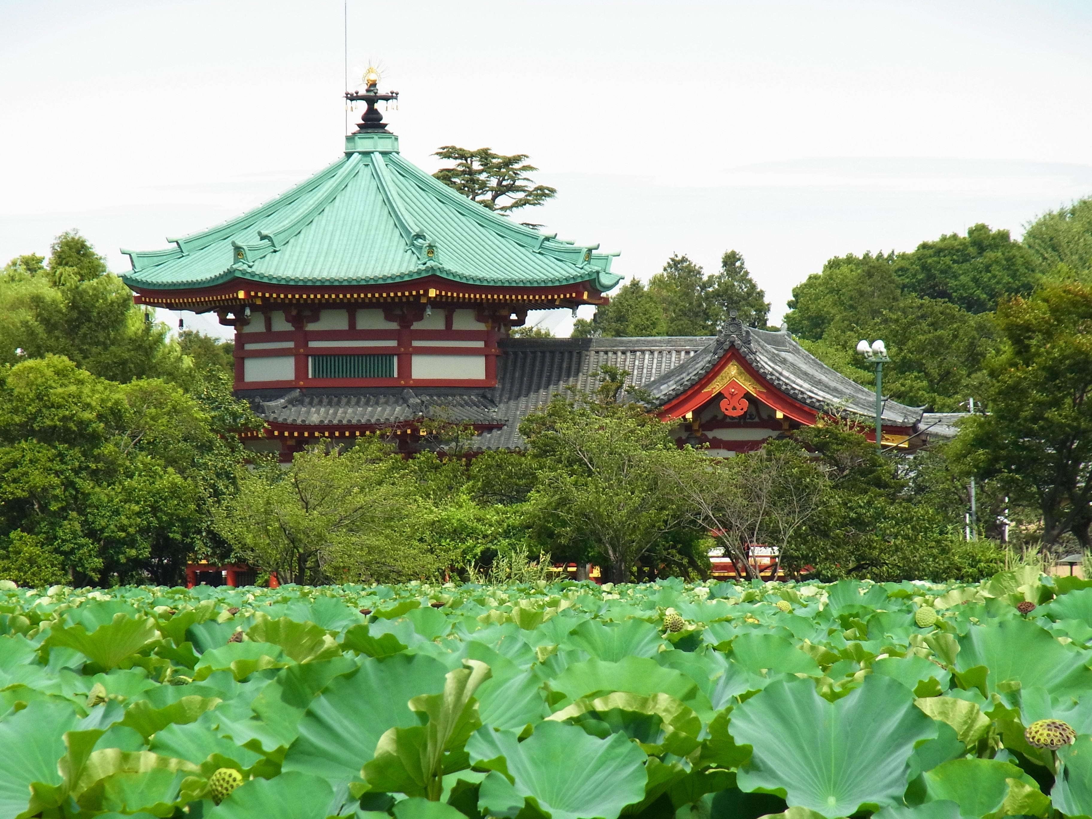 Tokyo in due giorni: Ueno Park Shinobazu Pond