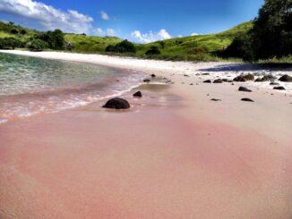 Pink Beach_Komodo, Indonesia: spiaggia rosa © lastminute.com