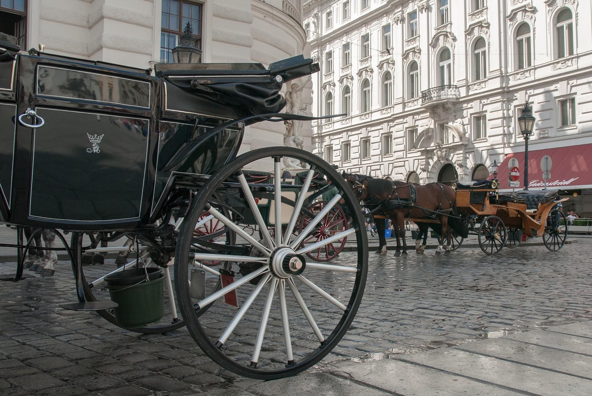 Cosa vedere a Vienna: il centro storico - Foto di Jojo Hasilla