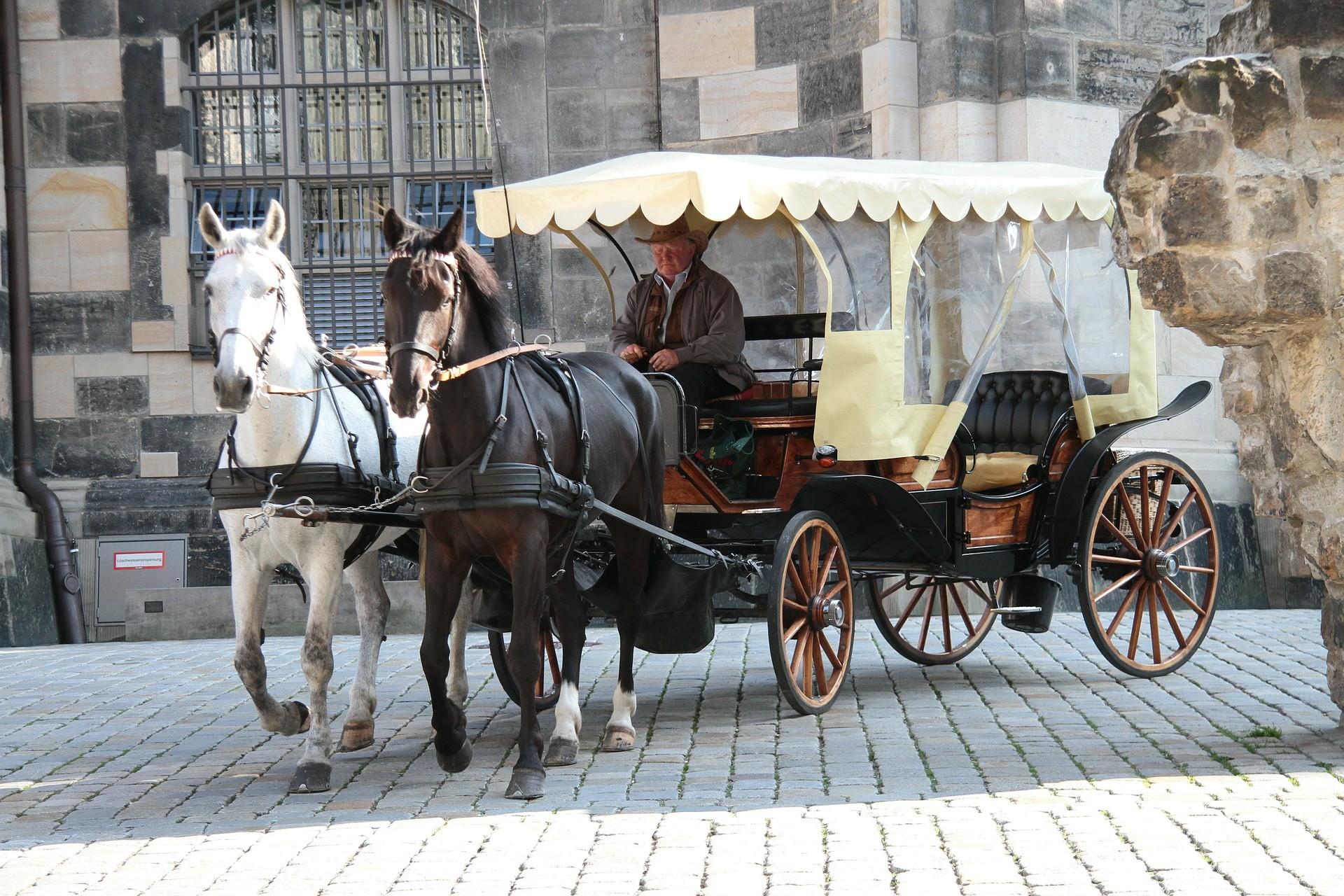 Come muoversi a Dresda, Germania - Foto di Holger Detje