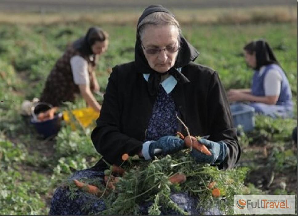 Una donna della comunità Hutterite del Montana