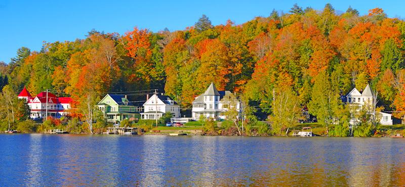 Foliage in Massachusetts