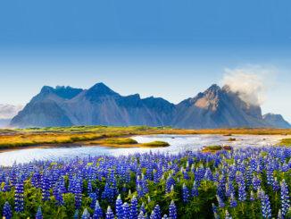 Islanda: Percorso nell'isola di Ghiaccio