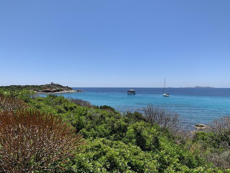 Macchia mediterranea intorno a Punta Molentis ©Foto Kate Edmunds/FullTravel.it