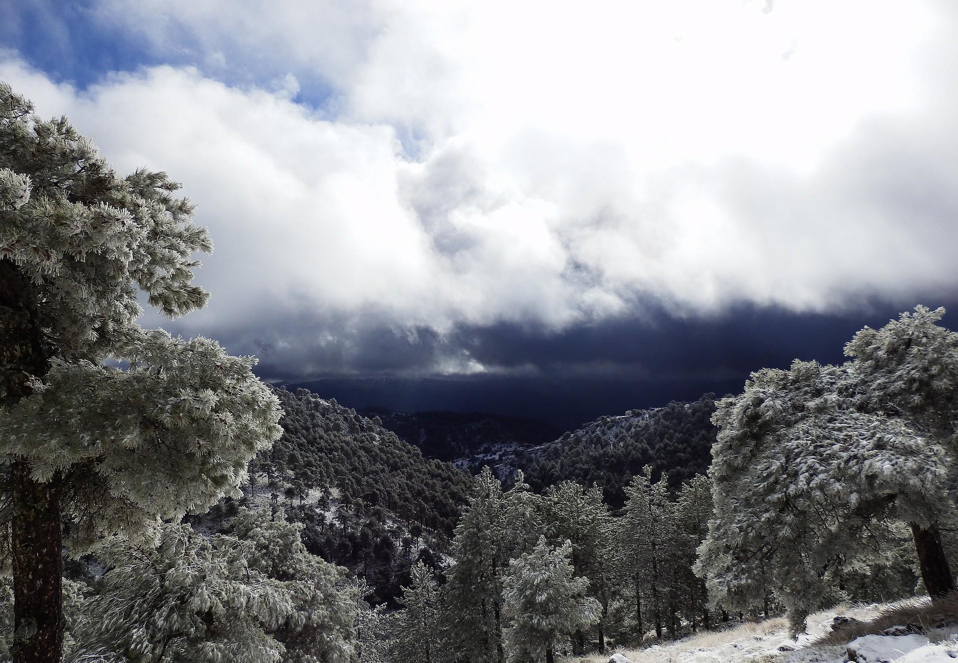 Sierra di Alcaraz - Foto di WildFox