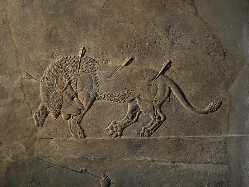 La caccia al leone dal palazzo di Assurbanipal a Ninive ©Foto The Trustees of the British Museum