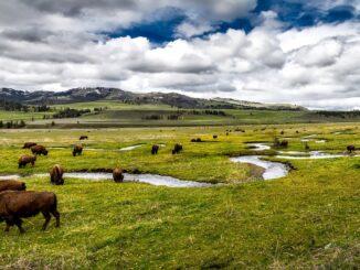 Paesaggio del Great America West - Foto di David Mark